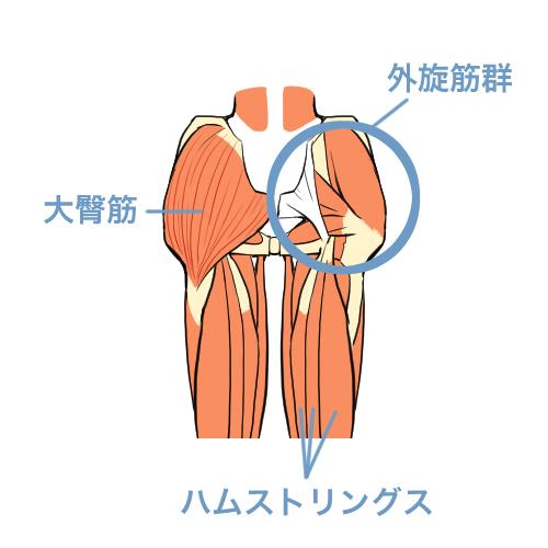 「股関節は回さない」