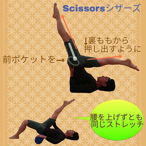 「Scissors(シザーズ)」