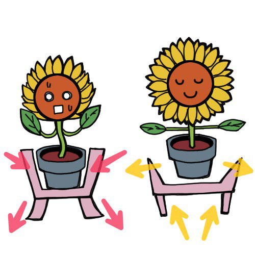 植木鉢もひまわりも昇ろうとする力
