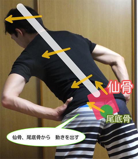 仙骨、尾底骨から動き出す
