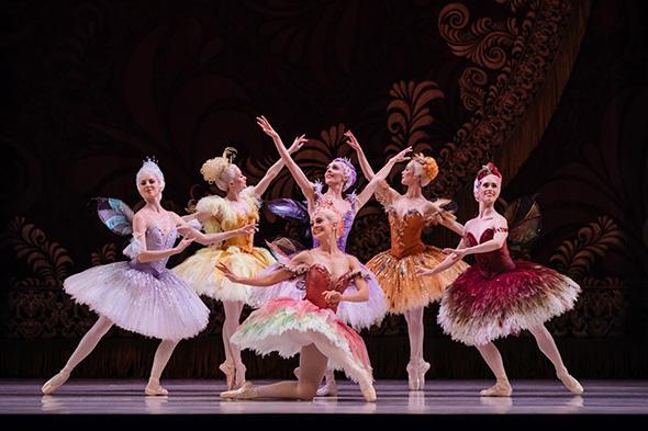 TAB Sleeping Beauty, Artist of the Australian Ballet, Photo Daniel Boud