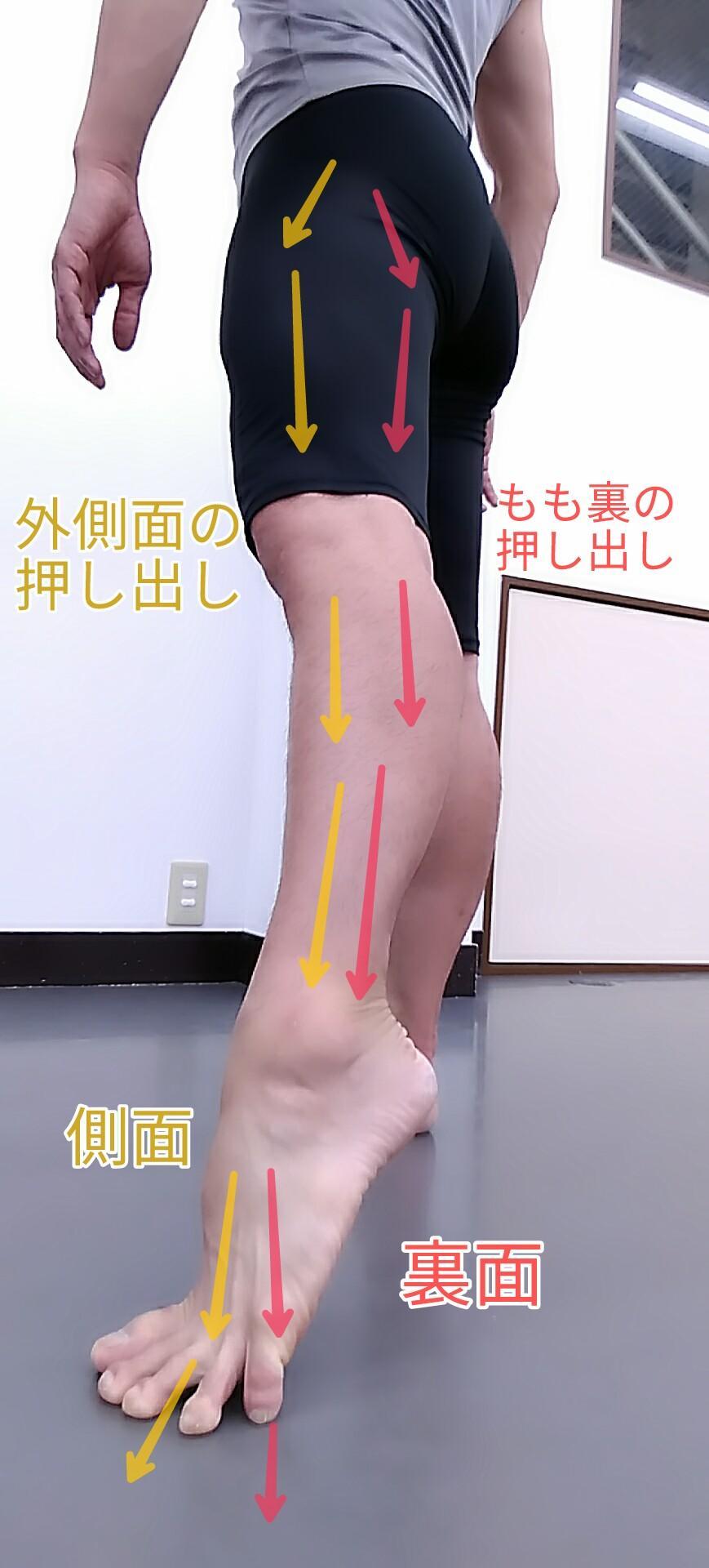 趾の押し引きと付け根2.jpg