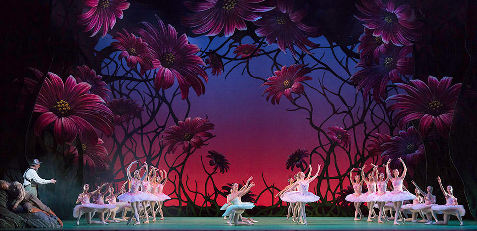 Don-Quixote.-Artists-of-The-Royal-Ballet.-c-ROH,-Johan-Persson,-2013.-(2).jpg