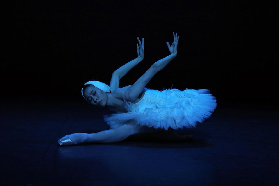 OPB-Etoile-de-l'Opera---c--Svetlana-Loboff--La-Mort-du-cygne---Park.jpg