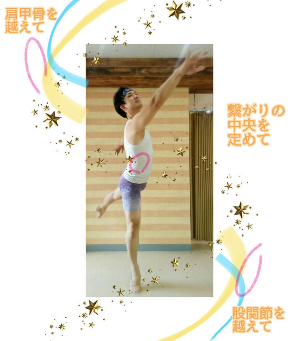 対になる腕脚と中央接点.jpg