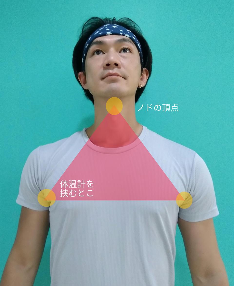 胸の三角.jpg