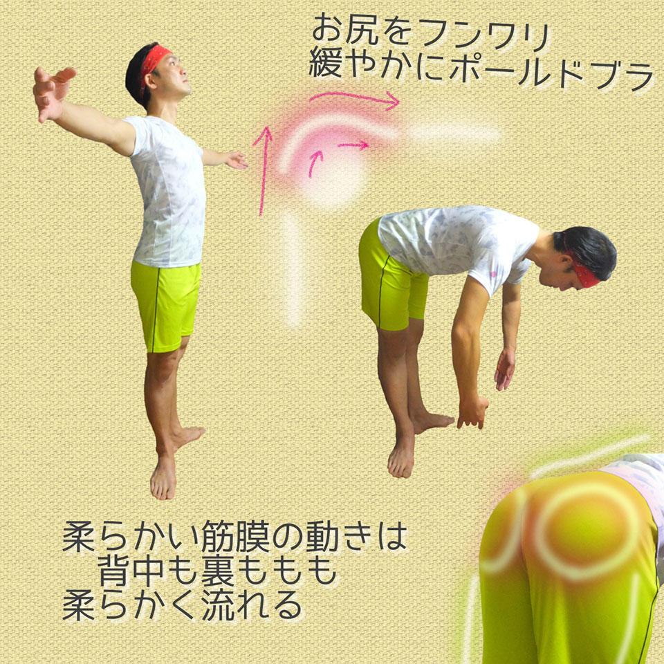 股関節とお尻のイメージ1.jpg