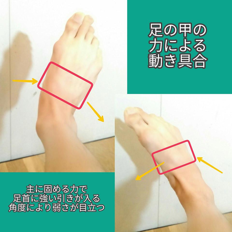 足の甲足首の違い2.jpg