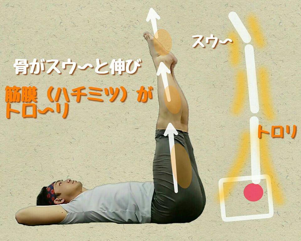脚を伸ばす.jpg