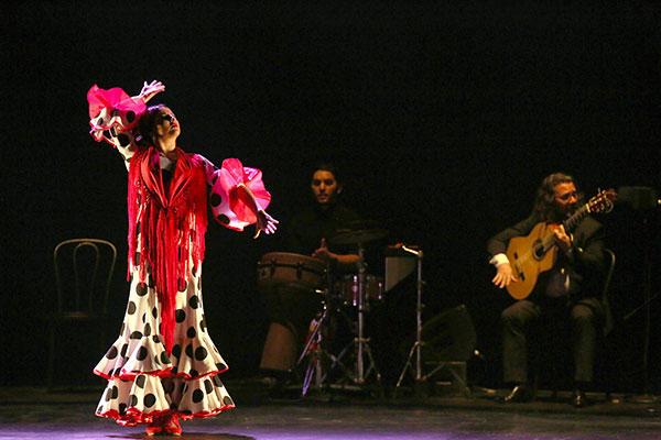 (C) Luis C Ribeiro