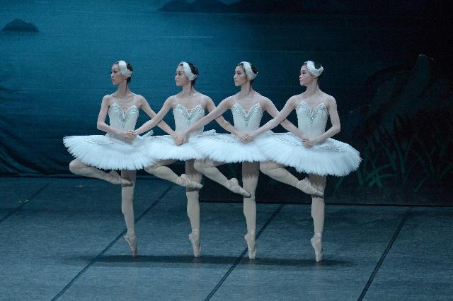 「白鳥の湖」小さい4羽の白鳥 左から米澤真弓、上中穂香、織山万梨子、永井萌 撮影/鹿摩隆司